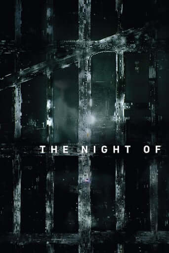 The Night Of - 1. Sezon
